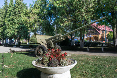 A cannon from World War II and a flower pot Canvas Print