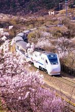 Chinese High-speed Train Cross...