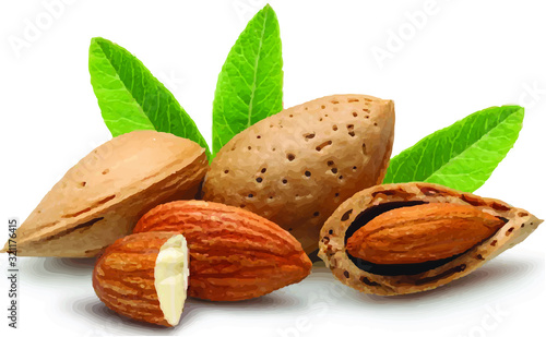 Photo almonds with leaves