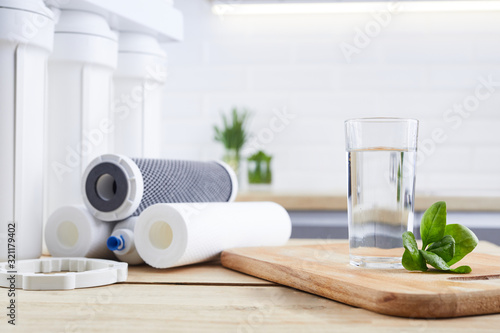 Cuadros en Lienzo Glass of clean water with osmosis filter, green leaves and cartridges in kitchen