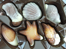 Box Of Packaged Shell-shaped C...