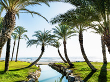 Alamos Beach In Torremolinos, ...