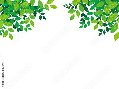 Foto 春の新緑の背景ベクターイラスト