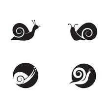 Set Of Snail Logo Template Vec...