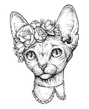 Hand Drawn Portrait Of Cute Sphinx Cat With A Wreath On Head. Vector Illustration Isolated On White