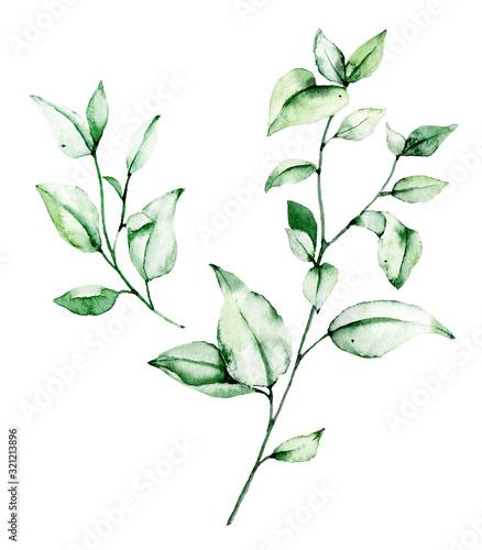 zestaw-lisci-liscie-akwareli-recznie-malowany-kwiatowy-ilustracje-zielen-liscie-roslina-galaz-odizolowywajaca-na-bialym-tle