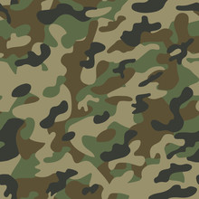 Texture Military Camouflage Se...
