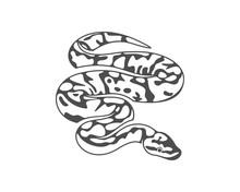 Python Snake Logo Vector, Anim...