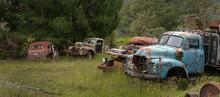 Junkyard. Oldtimer Cars. Buller River Highway 6 New Zealand. Carwreck. Rusty