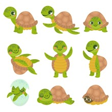 Cartoon Smiling Turtle. Funny Little Turtles, Walking And Swim Tortoise Animals Vector Set. Collection Of Cute Friendly Aquatic And Terrestrial Reptilians. Adorable Sea And Land Dwelling Reptiles.