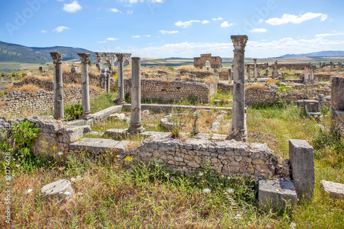 The ruins of the houses of the aristocracy of Volubilis. Morocco Canvas Print