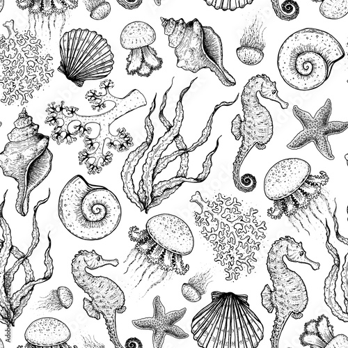 Seamless pattern. Underwater world hand drawn. Sketch illustration. Seaweed, coral, seashell, jellyfish illustration. Vintage design template. Undersea world collection. Black and white style.