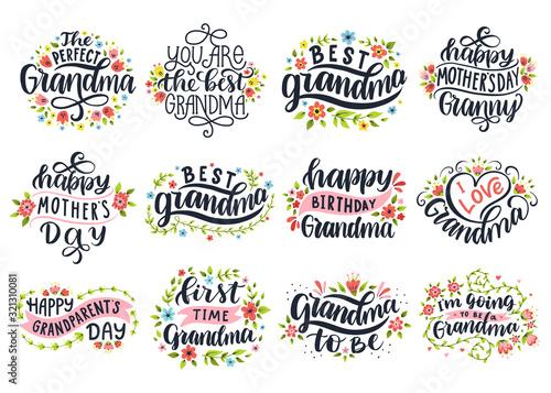 Fototapeta I love grandma.Best granny ever. Happy mother's day. First time grandma. Happy grandparent's day. obraz