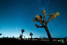 Stars In The Sky At Night Over Joshua Tree In Mojave Desert, California
