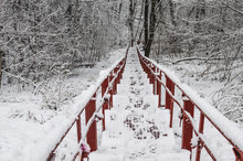 After The Snow, The Stairs Wer...