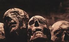Skulls. Group Of Mummified Skulls Inside An Ancient Crypt