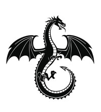 Black Silhouette Of The Dragon...