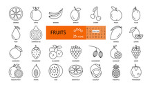 Fruit And Berry. Vector Thin I...