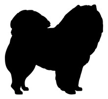 Chow Chow Silhouette With Name