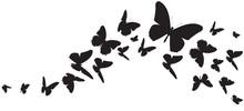 Butterfly407