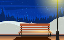 Bench In The Park In The Night