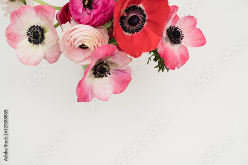 Pink blush and maroon ranunculus and anemone flowers flat lay Canvas Print