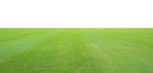 Grass Field Isolated On White ...