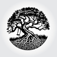 Root Of The Tree Vector Illust...