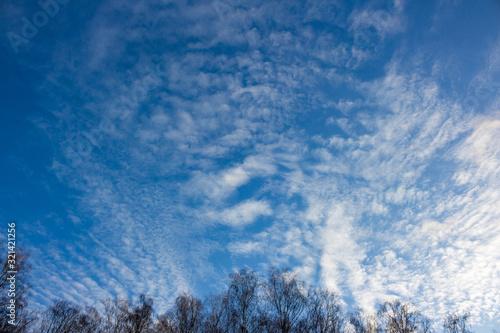 Altostratus clouds on a blue sky Wallpaper Mural
