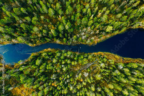 Obraz Aerial view of fast river through green pine forest in Finland - fototapety do salonu