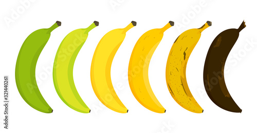 Valokuvatapetti Banana ripeness stages vector isolated. From unripe to rotten