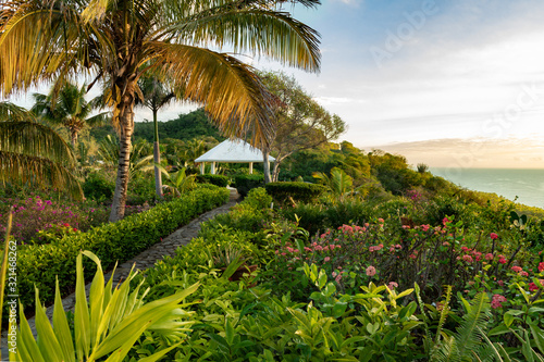 A beautiful tropical garden with a path to a pavilion, palm trees, ocean view, copy space, Samana, Dominican Republic