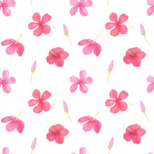 Hibiscus Flowers Seamless Patt...
