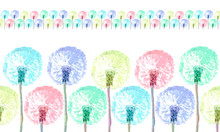 Dandelion Flower In Various Co...