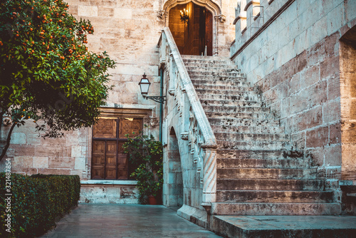 Large and spectacular stairs in a castle while traveling through the streets in Wallpaper Mural