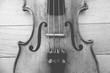 Violinsaiten