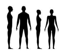 Front And Side View Human Body...