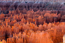 Hoodoos In Bryce Canyon Nation...