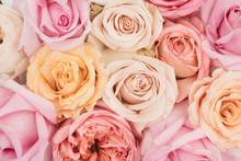 Feminine Flatlay With Pastel Color Roses On White Background