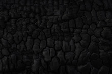Wood Charcoal Texture. Burnt T...