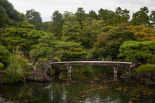 Japan, Himeji, Pond With Koi Carps And Footbridge In Adelaide Himeji Gardens