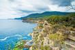 Tasman Peninsula, Tasmania, Australia: Scenery of jagged cliffs of the Tasmanian coast.