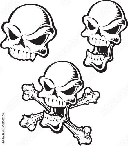 Skull and crossbones Canvas Print