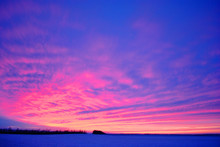 Field Covered With Snow, Bright Golden-pink Sunset Behind Poplar Trees Line Without Leaves On The Hills On Horizon, Winter Landscape, Bright Blue Cloudy Sky