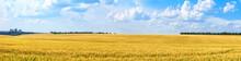 Rural Landscape, Panorama, Ban...