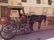 Malta And Gozo Images All Arou...