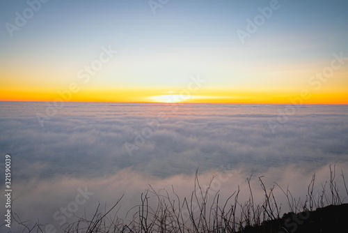 Marine layer above the Pacific Ocean at sunset. Aerial view, California Coastline