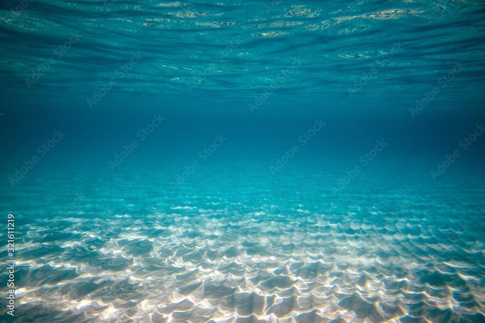 Fototapeta Empty underwater ocean bottom background with copy space