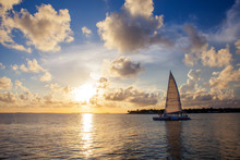 Sailboat At Sunset  Key West