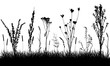 Grassland silhouette. Wild weeds on grass in field. Vector illustration.